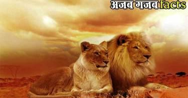 34 Amazing facts in Hindi (ऐसे रोचक तथ्य जिनके बारे में आप नही जानते होंगे )