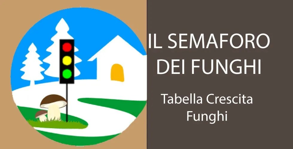 Calendario Funghi.Funghi Semaforo 2 Funghimagazine It