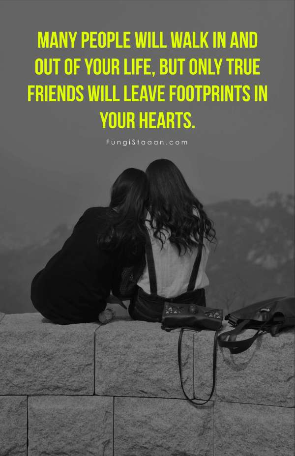 Friendship Day Quote Images