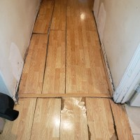 Water Damage and Wood Flooring: What You Need to Know