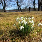 Der erste Frühlingstag in Berlin