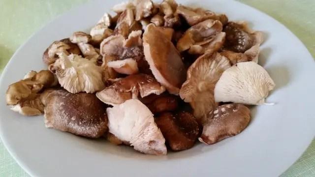 Shitake-Pilz-Ernte aus der eigenen Pilzzucht