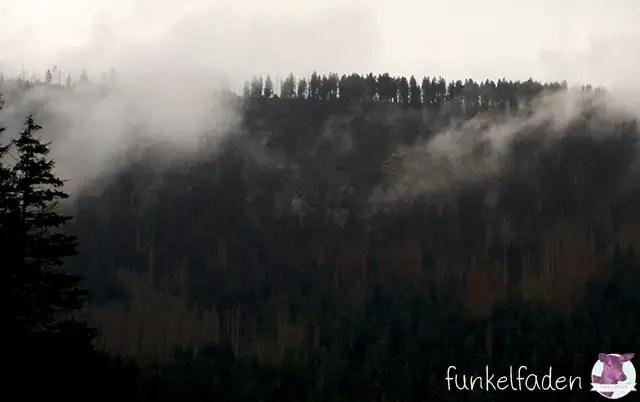Böhmischer Wald in Wolken