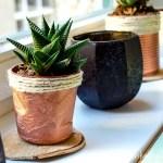 Upcycling – Blumentöpfe aus Joghurtbechern