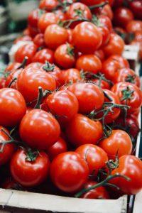 Tomaten in reichlichen Mengen