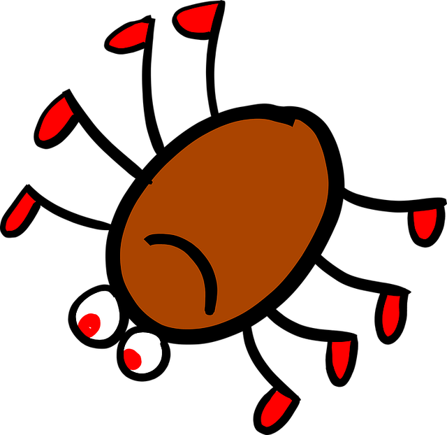 Spider Jokes for Kids - Jokes about Spiders