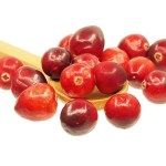 Cranberries - Cranberry Fun Jokes