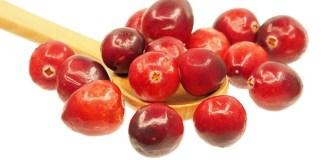 Cranberries - Cranberry Fun Jokes