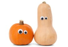 Gourd Jokes - Funny Autumn Jokes