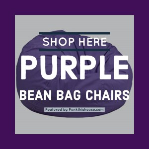 Shop Here for Purple Bean Bag Chairs