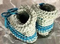 bluebooties3