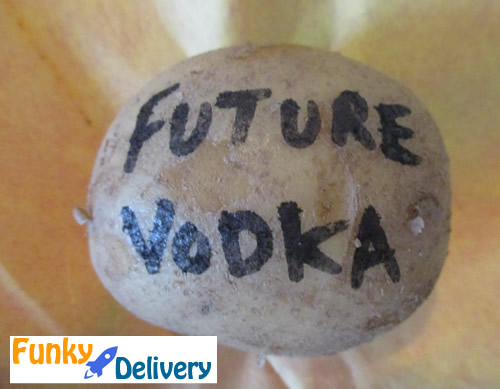 Future Vodka Potato Gram
