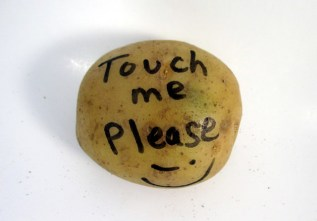 touch-me-please-potato