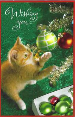Wishing You the Wonder of Christmas - Card with Cute Kitten