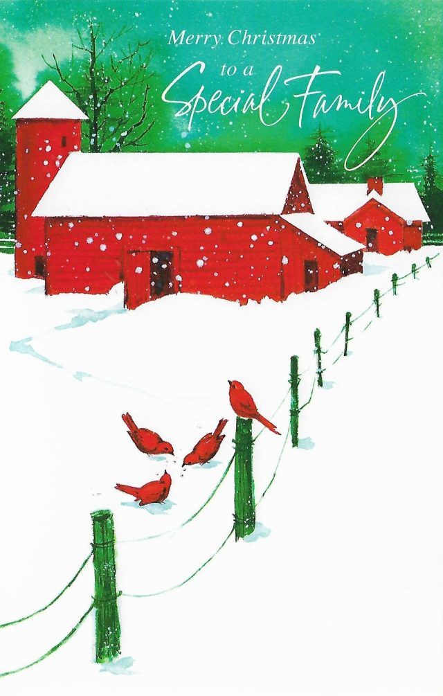 Merry Christmas to a Special Family - Personalized Christmas Card