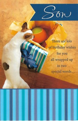 Son - There are Lots of Birthday Wishes - Birthday Card for Son