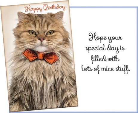 Happy Birthday Card with Cat in Bow Tie