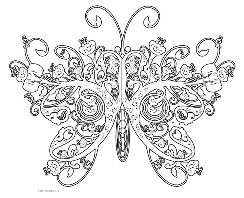 nariz para dibujar furthermore tinkerbell secret of the wings