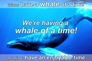 Idiom - Whale of a time