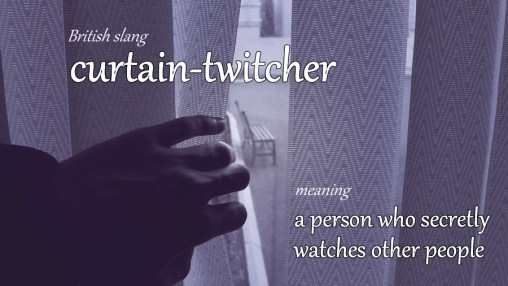 curtain-twitcher slang