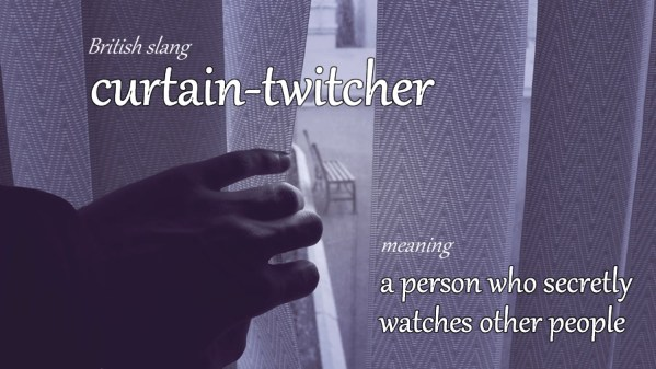 curtain-twitcher slang