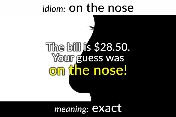 idiom-on-the-nose