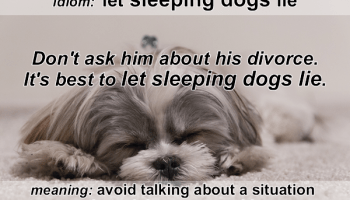 Idiom - Let sleeping dogs lie