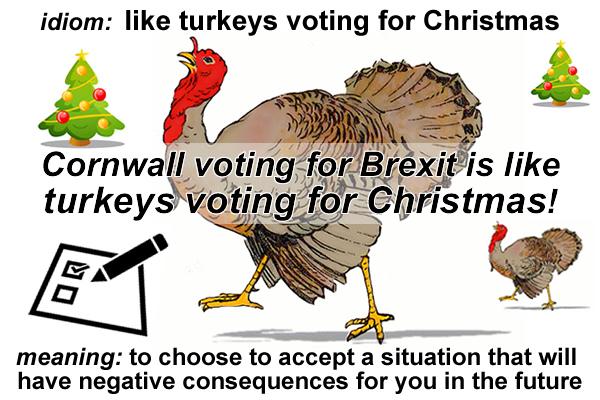 like turkeys voting for christmas - Christmas Idioms