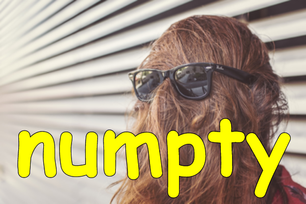 Slang - Numpty