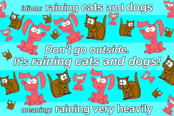 Idiom Raining Cats And Dogs Funky English