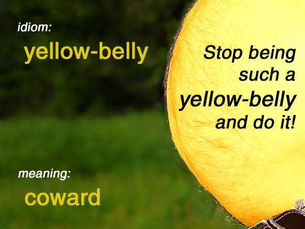 yellow-belly idiom