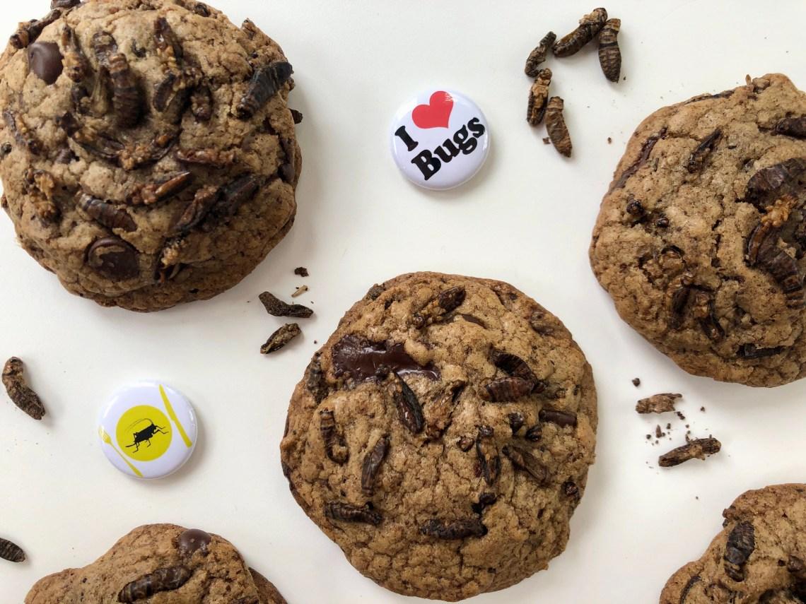 Cricket Cookies 2