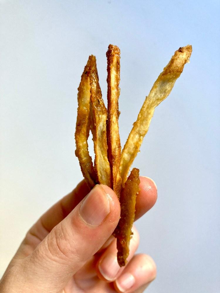 hand holding burdock root fries