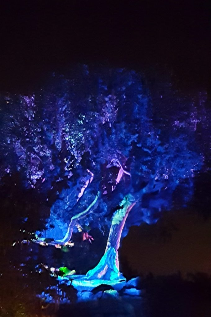 new-disney-world-attractions-tree-of-life
