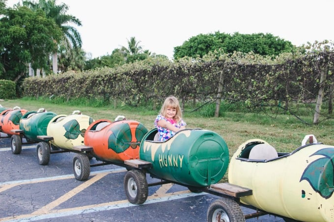 The Hunny Train at Mixon Fruit Farms