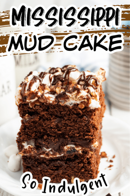 Mississippi Mud Cake Pin 1