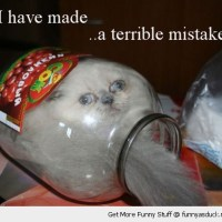Oopsie!