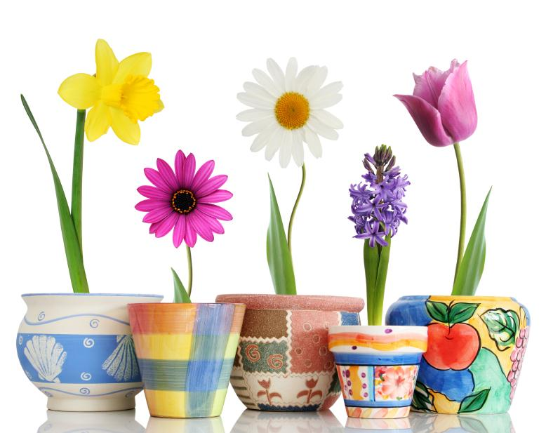 112120-778x617-Spring-Flowers-in-Pots