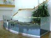「干潟の生態系」展示全景