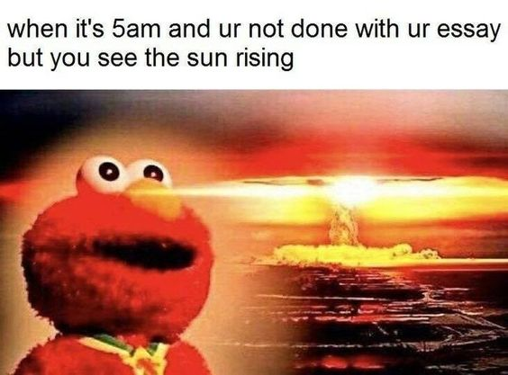 22 College Memes That Will Make You Happy It S Summer Funny Status