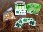 Irish Luck In a Box – St. Patrick's Day Kit