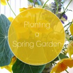 It's {almost} Spring! Let's Garden!