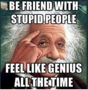 Stupid and Funny People