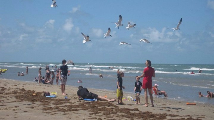 South Padre Island (Texas)