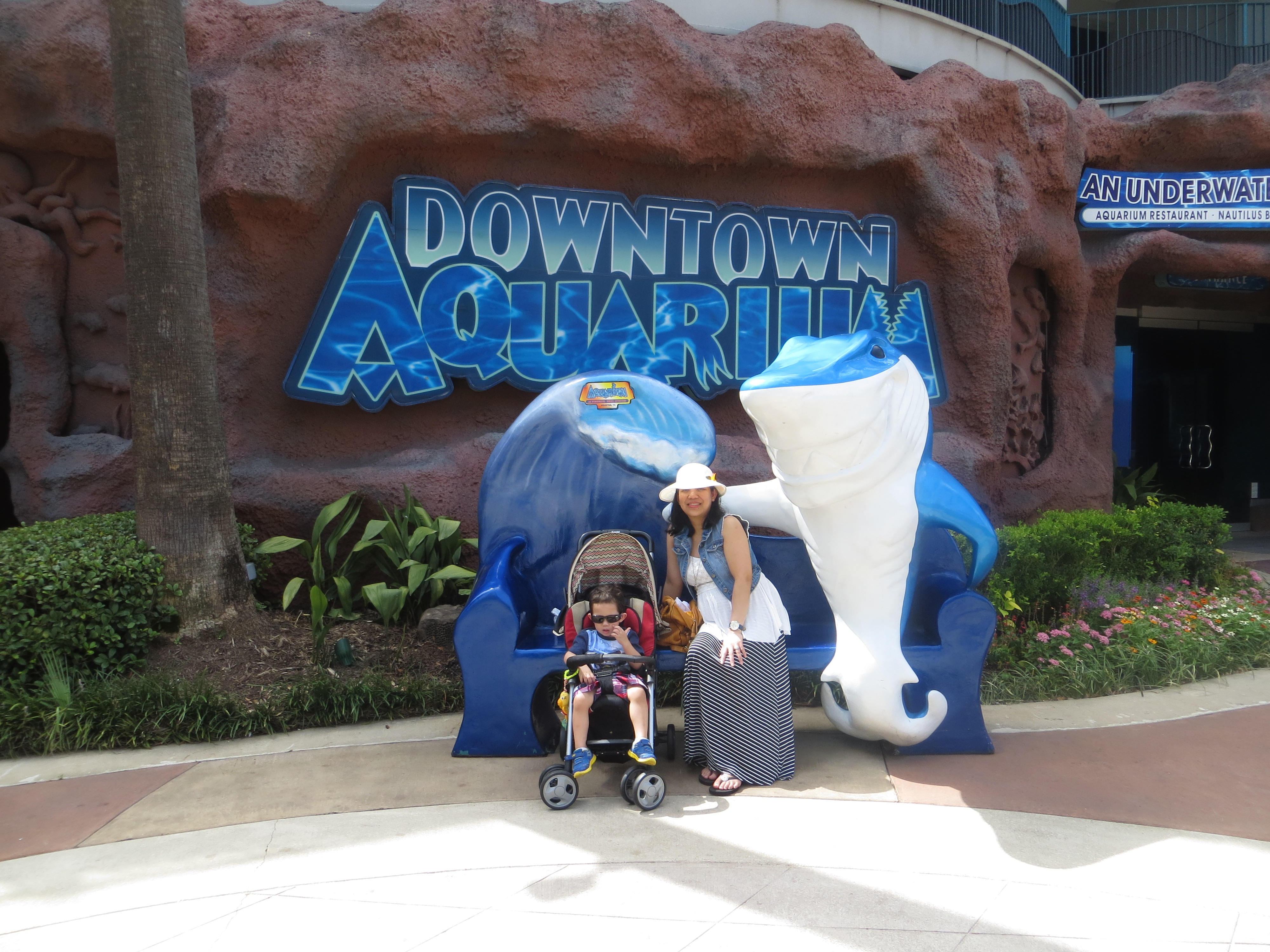 FUN FAMILY WEEKEND GETAWAY: DOWNTOWN AQUARIUM HOUSTON TX