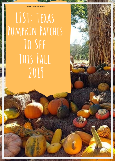 List :Texas Pumpkin Patches to see this fall 2019