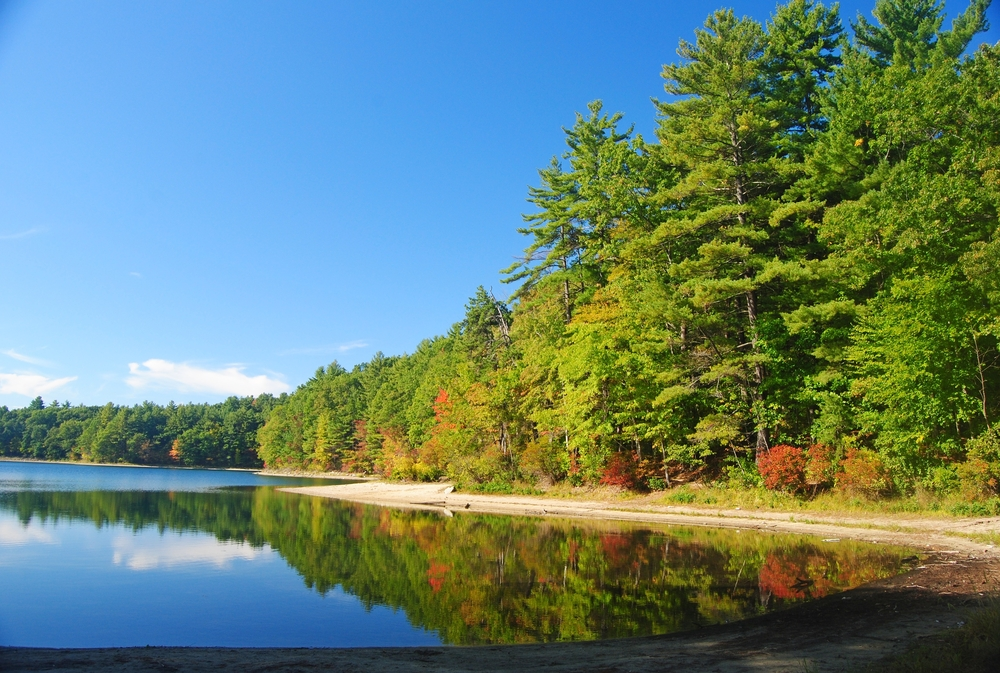 Frugal Summer Activities in Massachusetts - Walden Pond