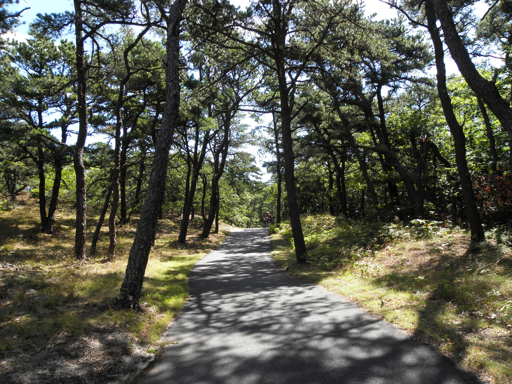 Frugal Summer Activities in Massachusetts - Cape Cod Rail Trail