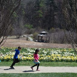 Celebrate STEAM at Tower Hill Botanic Garden during April vacation week