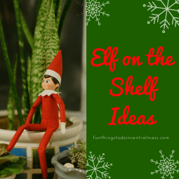 Creative Elf on the Shelf Ideas - Elf Hiding in a House Plant